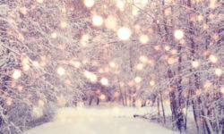 Christmas_Peace_623